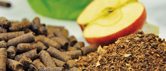 Herbavital – entpektinisierte Apfeltrester